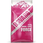 001b6-bavaro-dogfood-force
